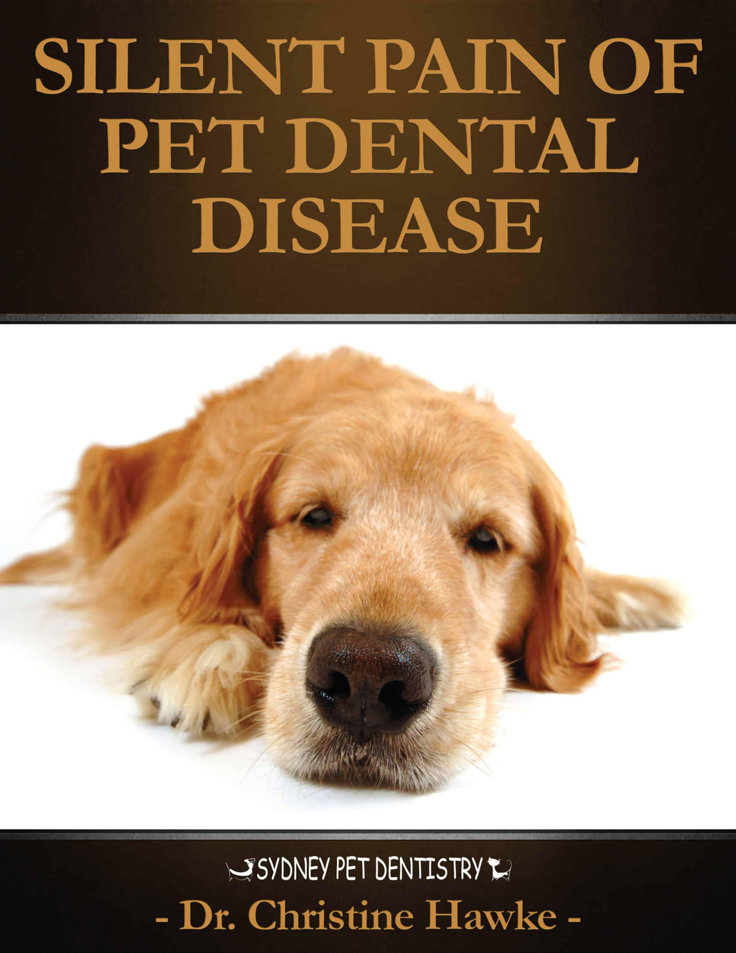 The Silent Pain of Dental Disease